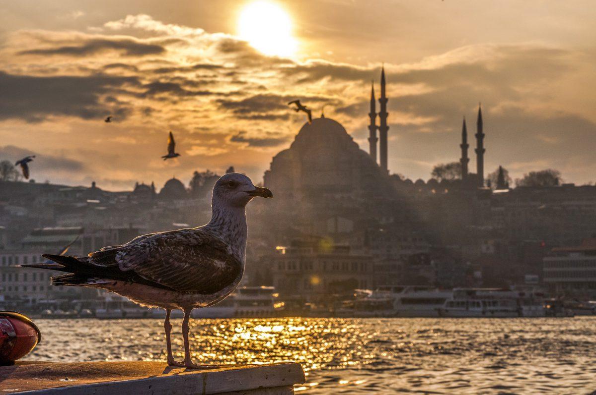 Die Türkei und Europa: 8 Bücher, die du jetzt lesen solltest